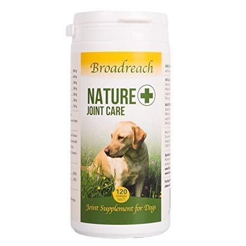 Advanced Joint Ergänzung für Hunde Prämiert Winning Produkt! - Extra Stark für Optimale Unterstützung Natürliche Zutaten - Veterinär Entwickelt - mit Glucosamin,Chondroitin & Kurkuma - 120 Tabletten