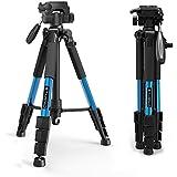 Kompaktes Stativ-tairoad tragbar 140 cm Leicht Stativ mit Schwenkkopf und Schnellwechselplatte für Digital SLR Canon EOS Nikon Sony Panasonic Samsung – Blau