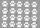 Generic Hundepfoten Aufkleber 24 Stück Pfoten 3x3cm Pro Pfote (12/3) (Weiß Glanz)