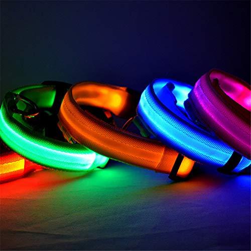 Mioloe LED-Licht Hundehalsband mit Batterie blinkt Nacht einstellbar Sicherheitshalsband Hunde Katzen
