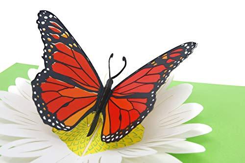 PopLife Pop-Up-Karte Monarch Schmetterling und Sonnenblume (Monarch-schmetterlings-flügel Für Kinder)