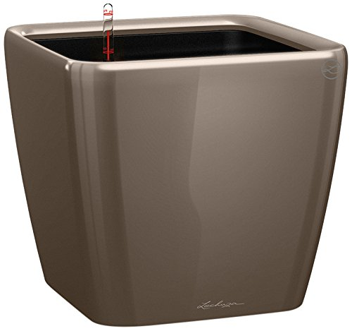 "LECHUZA\""QUADRO Premium LS 28\"" Pflanzgefäß mit Erd-Bewässerungs-System, Taupe Hochglanz, 28 x 28 x 26 cm"