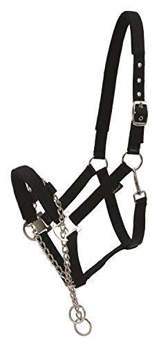Horse Guard Halfter mit Kette schwarz| Kontroll-Halfter mit Kette | Hengsthalfter | Control-Halfter -