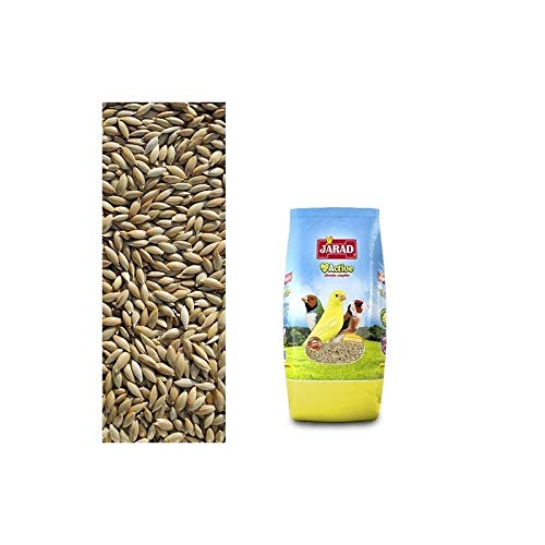 Jarad Graines pour Canarios 1 KG