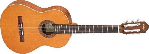 ORTEGA R180 3/4   GUITARRA DE CONCIERTO DE 3/4 (ACABADO MATE  INCLUYE FUNDA OCGB 34)