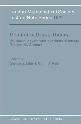 Geometric Group Theory: Volume 2 Paperback: v. 2 (London Mathematical Society Lecture Note Series)