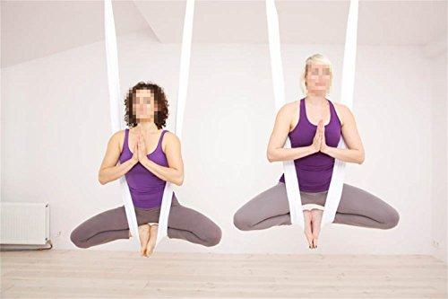 Diy Tuch (Yoga DIY Silk Pilates Premium Aerial Silks Equipment Aerial Yoga Tuch Aerial Silk elastische Yoga Hängematte NUR Stoff KEIN Zubehör (Weiß))