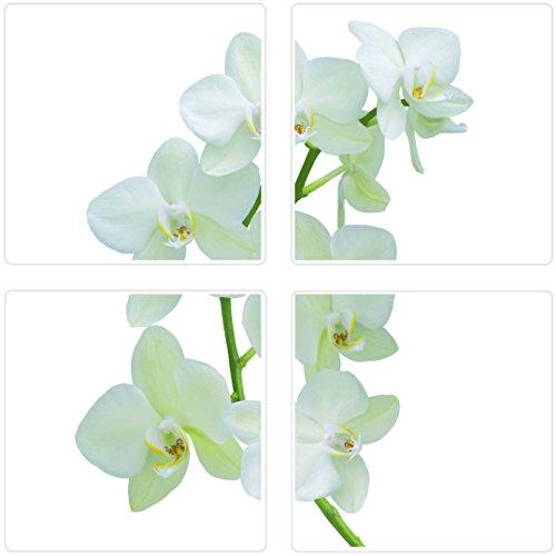 plage-260500-adesivi-per-ceramica-e-piastrelle-smooth-orchidea-4-fogli-145-x-145-cm