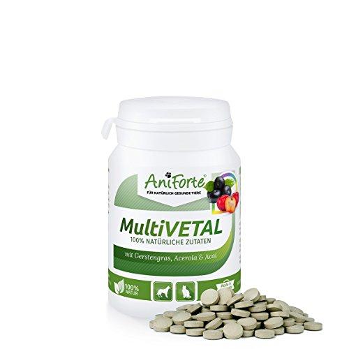 aniforte-poudre-der-multi-vitamine-tablettes-100-pcs-vitamine-a-b-c-d-e-k-provitamine-a-herbe-dorge-