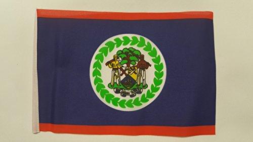 NWFlags Mini Drapeau du Belize – Environ 22 cm x 15 cm en Polyester avec Manche. Taille S