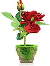 Victory Royal Home Decoration Artificial Red Roses Bonsai Flowers with Pot (Red, 26 cm)