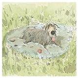illustré carte vierge–(Alm0001)–Boule de piscine–à partir du croquis Toby Gamme–Convient pour les anniversaires et autres occasions