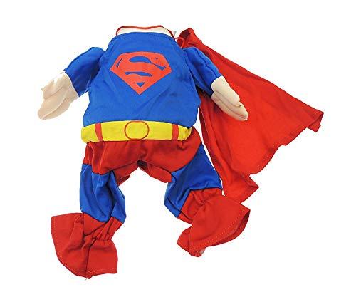 (Sehr niedliche Katzen kleine & Toy Breed Funny Kleid bis Superman Outfit Kostüm)