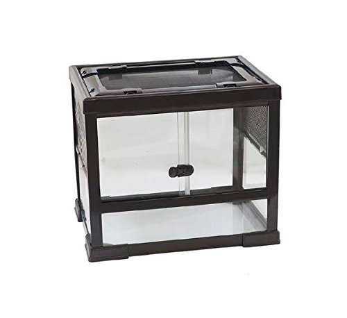 terrario-in-vetro-con-chiusura-disponibile-in-diverse-misure-per-rettili-anfibi-o-insetti-40x30x40hc