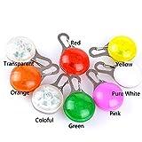kaimus Super Bright LED Leuchten Hundehalsband Hohe Sichtbarkeit Blinkende Sicherheit Pet Anhänger Charms Mini Ring