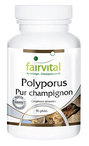 Polyporus - le champignon pur - Polyporus umbellatus poudre de champignon - 90 gélules végétariennes