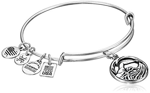 Alex and Ani  -    Messing, Metall, Rafaelian Silver, Einheitsgröße