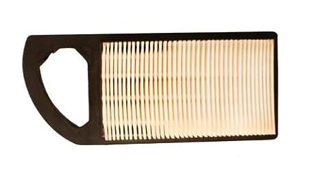 Briggs and Stratton 797007 Cartouche pour filtre à air (Import Grande Bretagne)