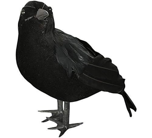 Guirca Rudy Corvo Negro Halloween