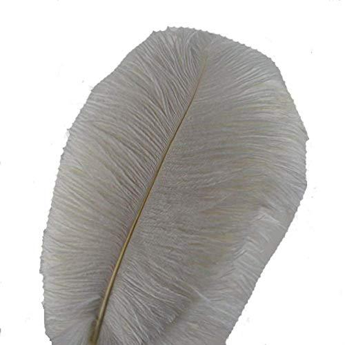 kolight Set von 10Stück 45,7cm ~ 50,8cm (45~ 50cm) natur Strauß Federn für Heimwerker Home Hochzeit Party Büro Dekoration weiß