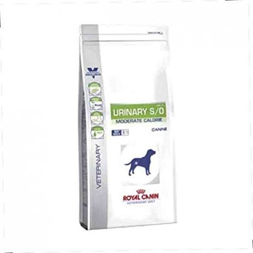 ROYAL CANIN Urinary S/O Moderate Calorie - Hund - Veterinary Diet - Diätfutter bei Harnsteinen 12kg -