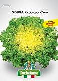 Sementi orticole di qualità l'ortolano in busta termosaldata (160 varietà) (INDIVIA RICCIA CUOR D'ORO)