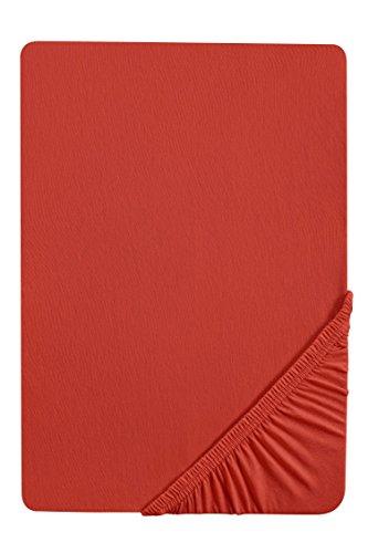 biberna 77155 Jersey-Stretch Spannbetttuch, nach Öko-Tex Standard 100, ca. 180 x 200 cm bis 200 x 200 cm, chili (Wasserbett Spannbettlaken Queen)