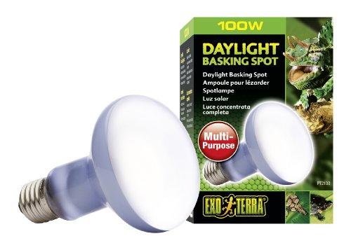 Exo Terra PT2133 Daylight Basking Spot - Breitspektrum-Tageslichtlampe für Terrarien R25/100W