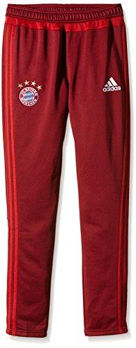 adidas Jungen Hose FC Bayern München, Craft Red/True Red, 176