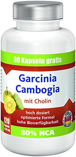 Garcinia Cambogia mit 80% HCA, 1890mg Garcinia, 120 Kapseln: Premium ANGEBOT!! bestes Preis-Leistungsverhältnis, hergestellt in Deutschland, extrem hohe Bioverfügbarkeit, hoch dosiert, rein natürlich