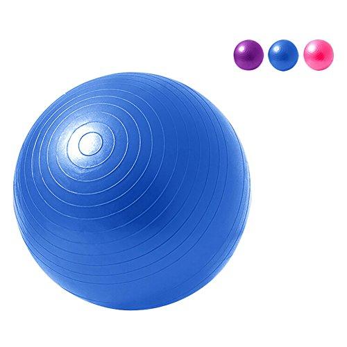 Übung Ball Chair (Lanlan Anti-Burst rutschfeste Fitness Gymnastikball Yoga Ball Body Balance Ball (Farbe zufällig) 65cm PVC)