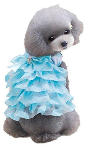 �dchen Hund Katze Rüschen Girly Prinzessin Kleid Kostüm Outfit klein Hundebekleidung Kleidung XS-XL - Blau, Extra Large ()