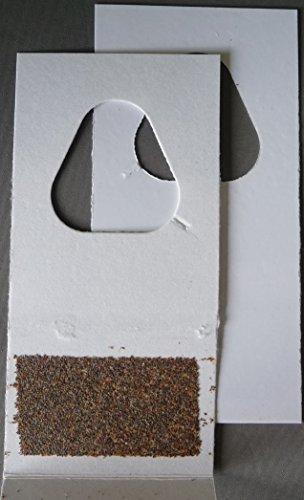 Schlupfwespen gegen Lebensmittelmotten 6000 Stück x 3 Lieferungen auf 2 Karten Test