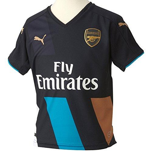 Puma Camiseta Deportiva Infantil AFC Kids Cup del Equipo Borussia Dortmund Gris Anthracite-Capri Breeze-Victory Gold-White Talla:140