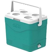 Cosmoplast Keep Cold Plastic Picnic Cooler Icebox 24 Liters