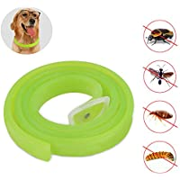 PETCUTE Dog Anti Flea & Tick Collar, Pest Repellent Collar with Natural Formula for Dogs and Puppies, Fully Adjustable, Kills Mosquitoes, Lice and Flea with High Efficiency
