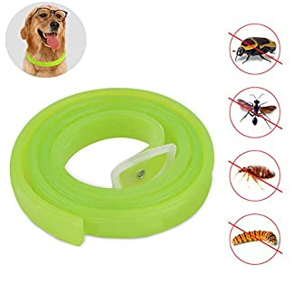 petcute dog anti flea & tick collar, pest repellent collar with natural formula for dogs and puppies, fully adjustable, kills mosquitoes, lice and flea with high efficiency PETCUTE Dog Tick collar dog flea treatment cat flea collars mosquito repellent flea collar for cats Adjustable Kills Mosquitoes, Lice and Flea 41JFwg6DoDL