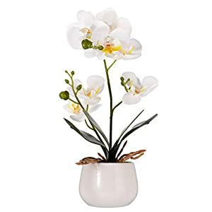 Asvert Flores Artificiales Plástico Flor de Phalaenopsis Realista Mariposa Orquídea con Maceta Imitación Cerámica…