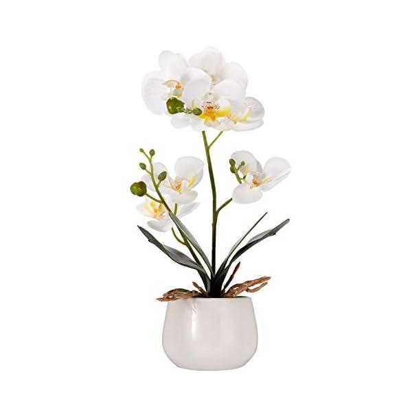 Asvert Flores Artificiales Plástico Flor de Phalaenopsis Realista Mariposa Orquídea con Maceta Imitación Cerámica Decoración Cálida para Hogar Dormitorio y Oficina