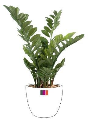 Plante verte artificielle Zamia 90cm