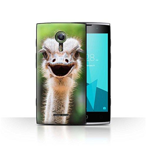 Stuff4® Hülle/Case für Alcatel Flash 2 / Strauß/Emu Muster/Wilde Tiere Kollektion