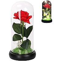 Langxun Rosa de seda roja y luz LED que dura para siempre en cristal inspirado en la cúpula y la base de madera negra cubierta con Real Moss para la decoración del hogar Decoraciones de la boda Regalo de San Valentín Regalo del Día de la Madre