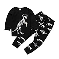 HupoopBaby Boy Kids Cartoon Dinosaur T Shirt Tops+ Pants Pajamas Sleepwear Outfits Set(Black,1-7Y)