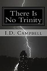 There Is No Trinity (When You Read This Book You Will Know That 3) (English Edition)