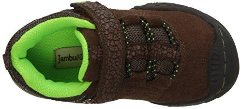 Jambu KD Serpants-S Synthétique Baskets brown