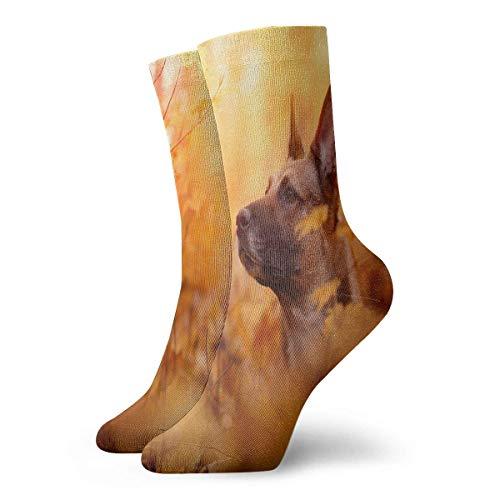 Kotdeqay Dog Men Women Novelty Funny Crazy Crew Sock Printed Sport Athletic Socks 30cm Long Personalized Gift Socks -