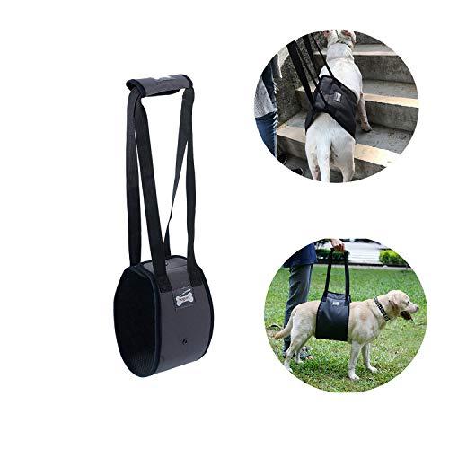 Tineer Dog Lift Harness Stützgurt für ältere oder behinderte Hunde - Stützgurt Hinten Hilfe Schwache Beine Aufstehen, Gehen, Treppensteigen - Gehender Hilfsgurt für mittelgroße Hunde (L, Grau) (Gehen Und Aufstehen)