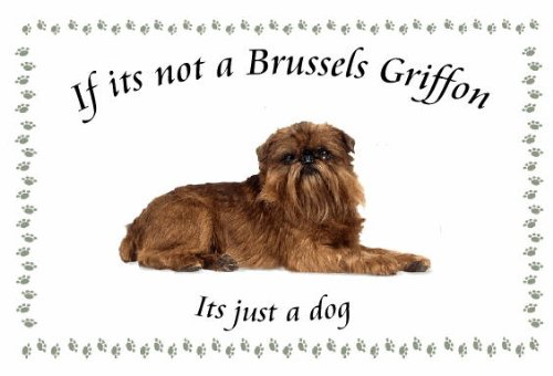 Brussels Griffon – Novelty Dog keyrings – If its not