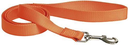 CHAPUIS SELLERIE SLA146 Guinzaglio per cani - Collare in nylon arancione - Larghezza 25 mm - Lunghezza 1,20 m - Misura L