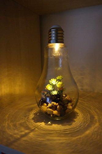 2er Set Led Retro Gluhbirne Mit Pflanze Dickes Glas Kies